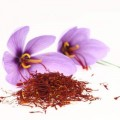 Crocus sative herb